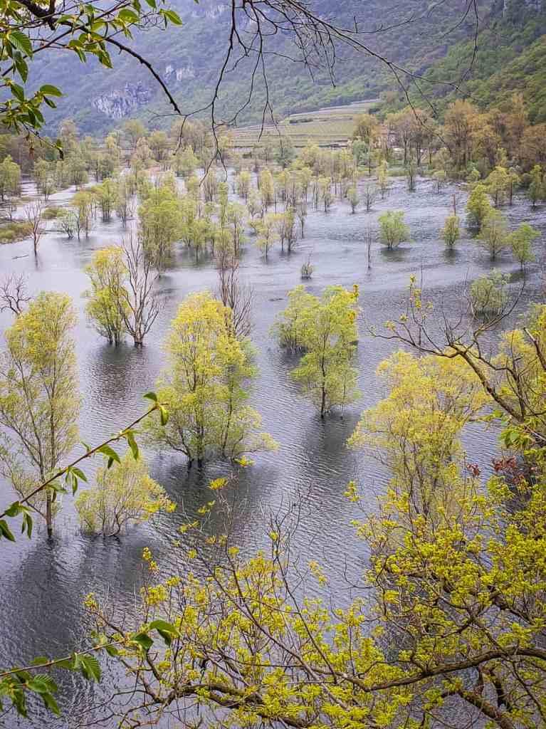 Love Trentino - Lago di Loppio (credits Francesco Serafini)