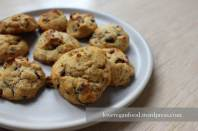 Cranberry-Kokos-Cookies