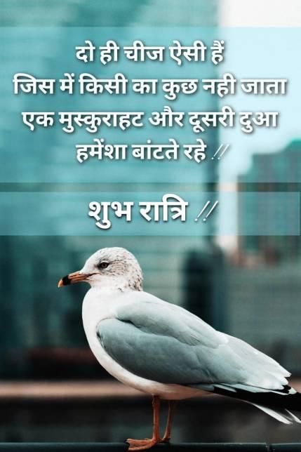 beautiful-good-night-quotes-in-hindi-image-248-www.LoveVidStatus.com