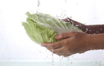 白菜 メリット デメリット レシピ