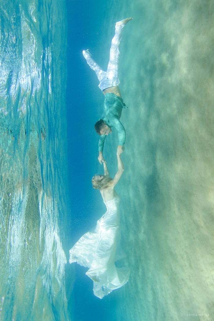 Maui underwater photographers