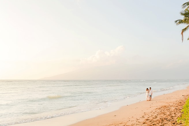 Maui-Proposal-Photographers_0072.jpg