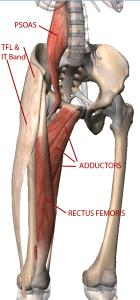 anteriortilterspelvis