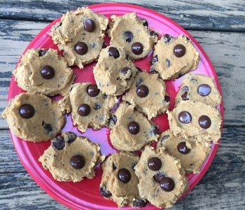 Grainless Peanut Butter Chocolate Chip Cookies