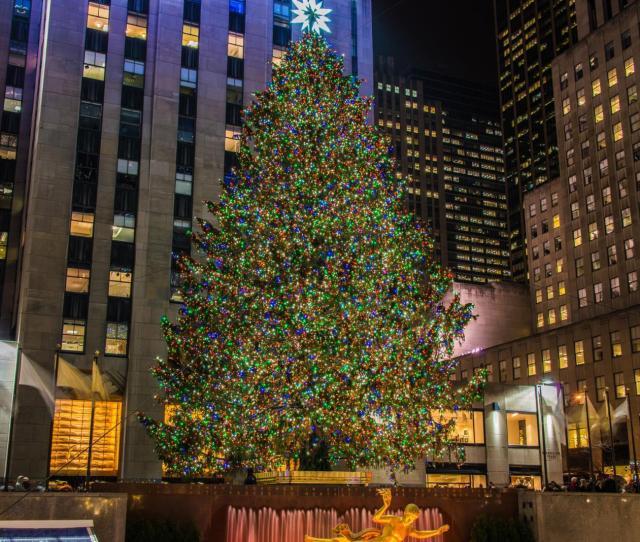 The Tree Lighting Ceremony