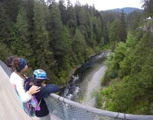 view from the suspension bridge