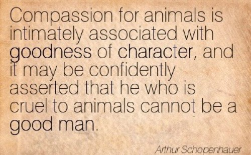 goodness of character quote