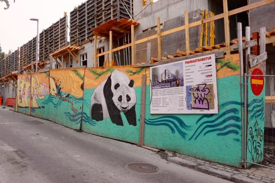 cute panda covering construction