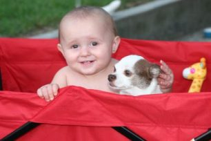 Baby and dog, 2016