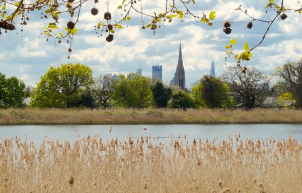 Woodberry300416c: Stamford Hill, from Woodberry Wetlands 226 Lordship Road, Stoke Newington N16 5HQ opened 1 May 2016 © DavidAltheer [at] gmail.com