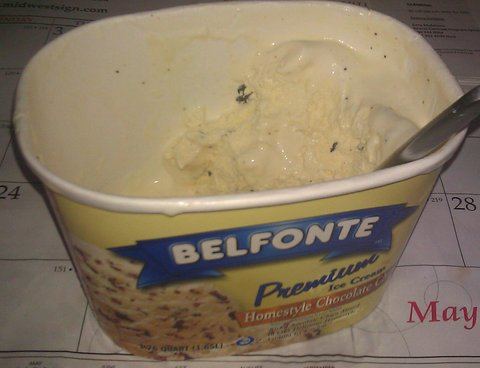 Chocolate chip ice cream