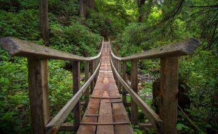 Shaky Bridge-19159900883