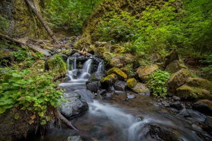 Starvation Creek Falls Trickles-19418873939
