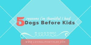 5 Reasons I'm Thankful I Had Dogs Before Kids