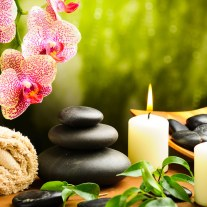 SPA IMAGE FROM ISLAND GIRL WEBSITE