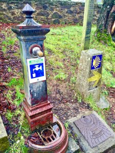 Camino_sign