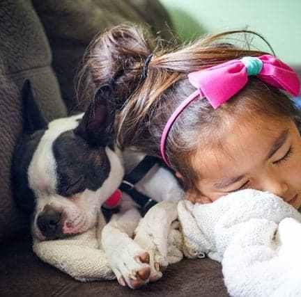 Kindvriendelijke hond