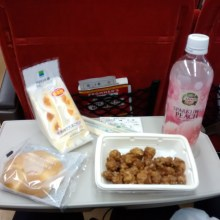 Train meal #3: back to Kyoto