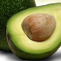 Abacate com alto teor de gordura