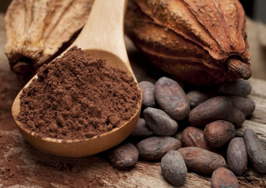 receita de cha antioxidante low carb 1 - Low Carb