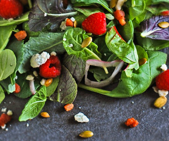 zero carb food greens cheese seeds