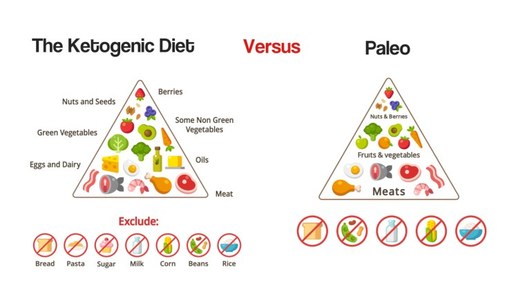 The Ketogenic Diet Versus Paleo