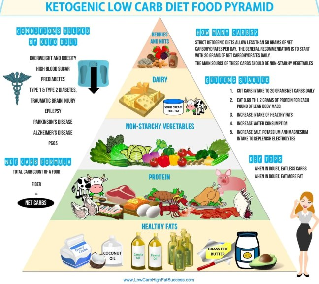 ketogenic low carb diet food pyramid infographic