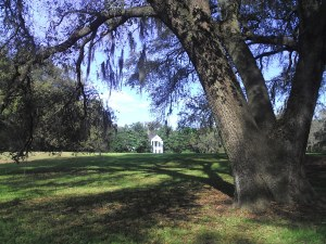 Friendfield Plantation Grounds