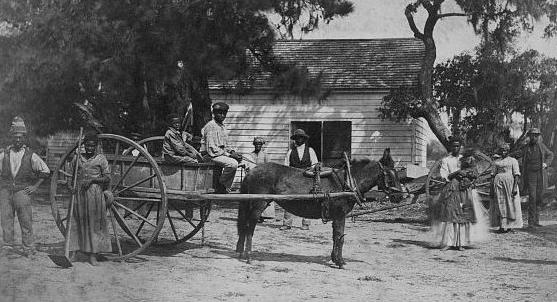 African Americans at Hopkinson Plantation Edisto