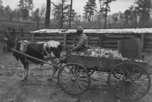 Farm Wagon Reed Camp SC