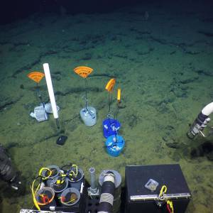 TCM-3 on the seafloor. Photo by: Chris Roman, URI.
