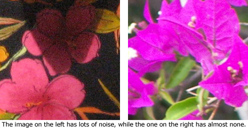 Noise in a digital image