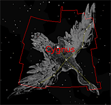 The constellation Cygnus as shown in Starry Night
