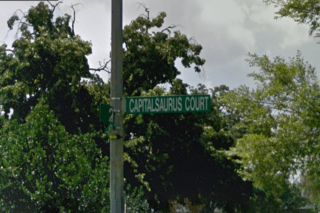 Capitalsaurus court