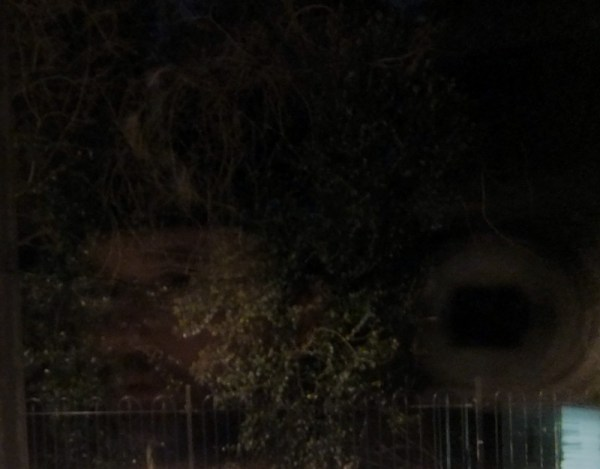Faint reflection of me and my camera in a window with the trees of a graveyard next door behind