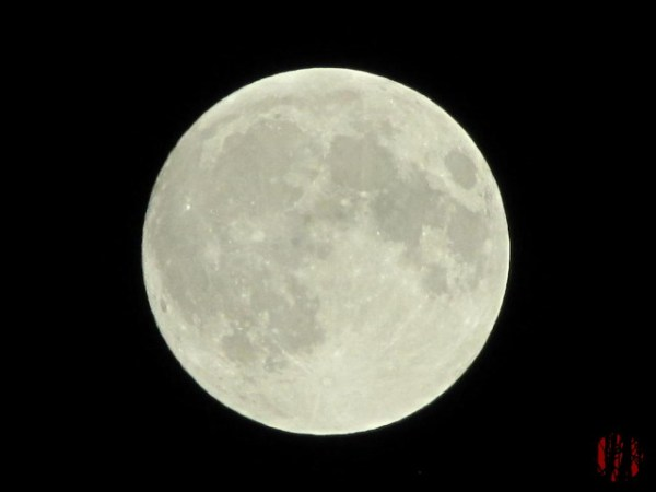 """Photograph of the moon taken early on the night of a combined total lunar eclipse and a """"super moon"""""""