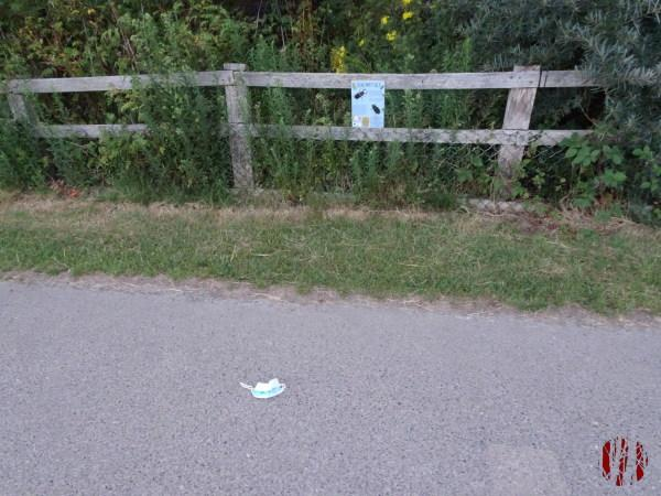 A mask on a path in Horsham Park in the Covid era