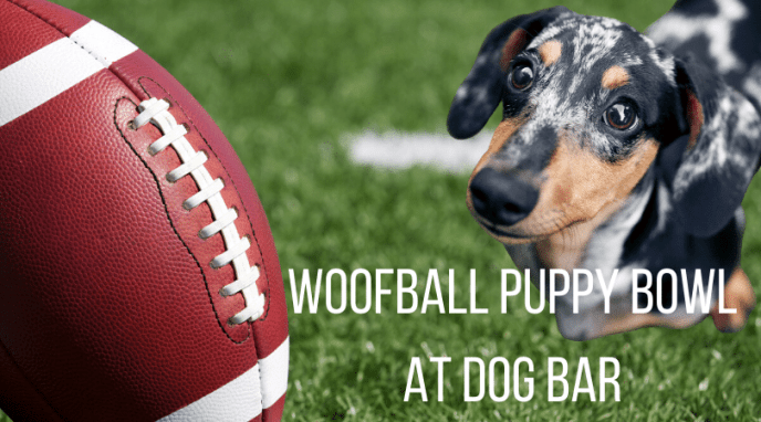 Woofball Puppy Bowl Event