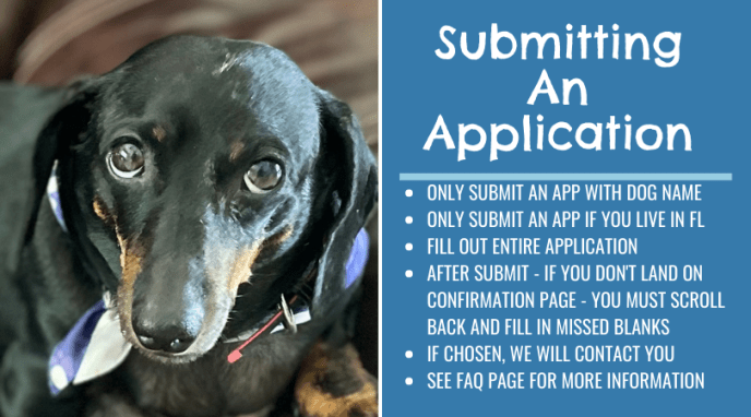 Adoption application online