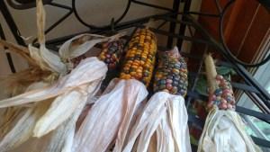CornDrying