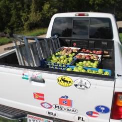 Truck full of Apples.