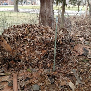 Leaf bin.