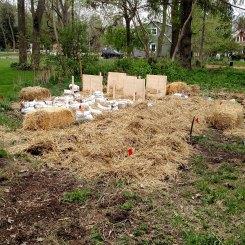 Cooksville plot.