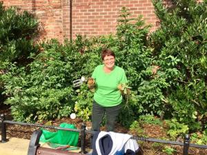 Golborne in Bloom volunteer