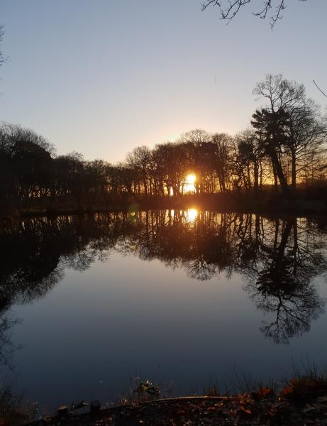 Sunset over pond at Keeper's Wood, Golborne, taken by Jamie Allen