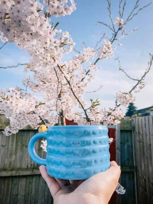 Drinking a cup of team in the garden with cherry blossom in the background