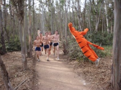Tigger ambushes cc team running track winnie the pooh
