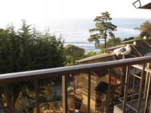 Hyatt Highlands Inn porch with seagull visitor