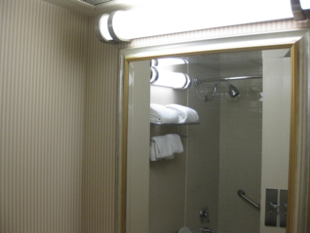 Sheraton Denver Tech Center small bathroom