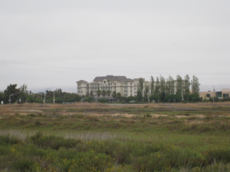 W Silicon Valley seen from La Riviere Marsh